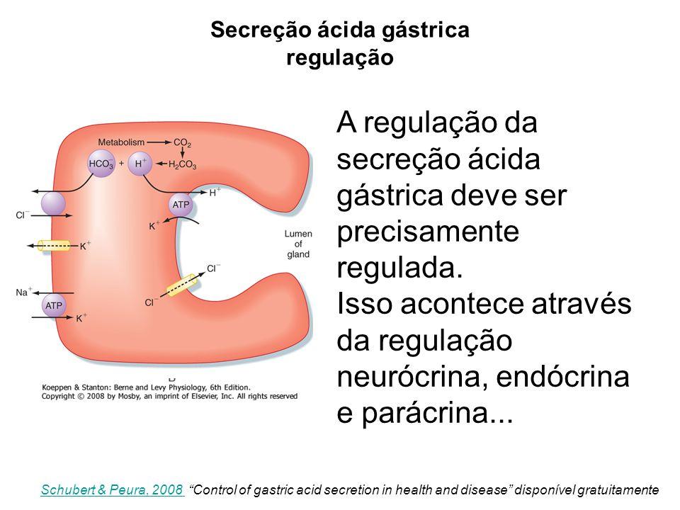 A regulação da secreção ácida gástrica deve ser precisamente regulada. Isso acontece através da regulação neurócrina, endócrina e parácrina... Schuber