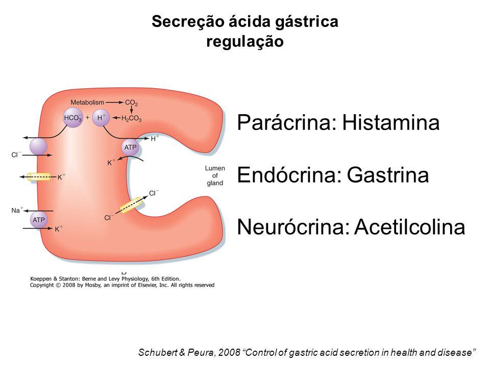 Parácrina: Histamina Endócrina: Gastrina Neurócrina: Acetilcolina Schubert & Peura, 2008 Control of gastric acid secretion in health and disease Secreção ácida gástrica regulação