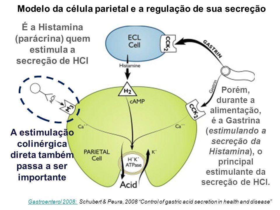 """Modelo da célula parietal e a regulação de sua secreção Gastroenterol 2008; Gastroenterol 2008; Schubert & Peura, 2008 """"Control of gastric acid secret"""