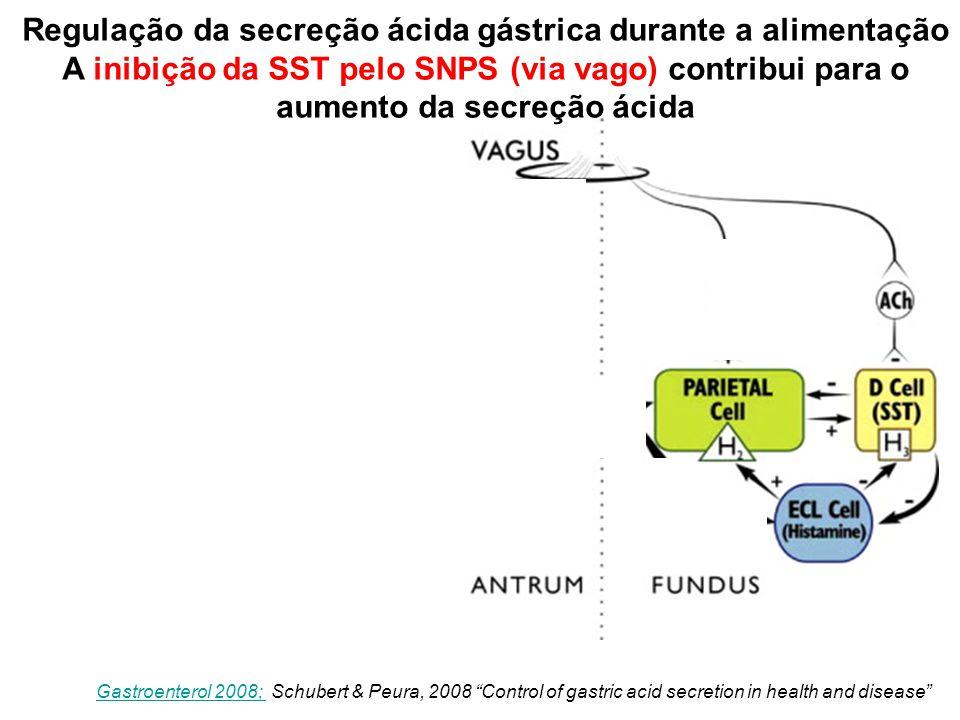 Figure 4 Gastroenterol 2008; Gastroenterol 2008; Schubert & Peura, 2008 Control of gastric acid secretion in health and disease Regulação da secreção ácida gástrica durante a alimentação A inibição da SST pelo SNPS (via vago) contribui para o aumento da secreção ácida