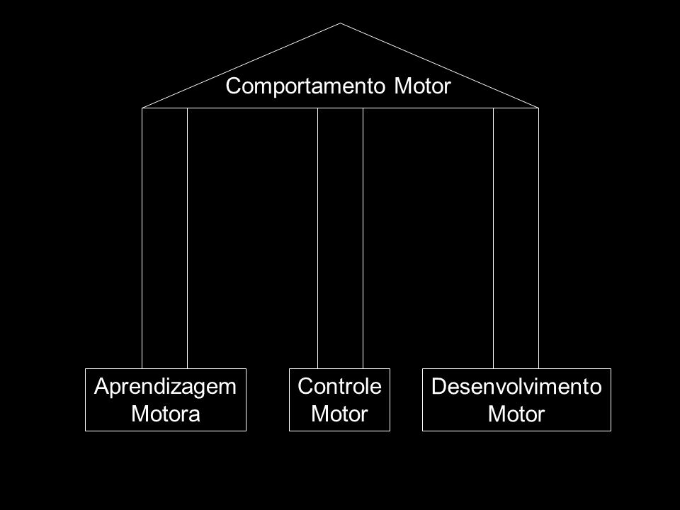 Comportamento Motor Controle Motor Aprendizagem Motora Desenvolvimento Motor