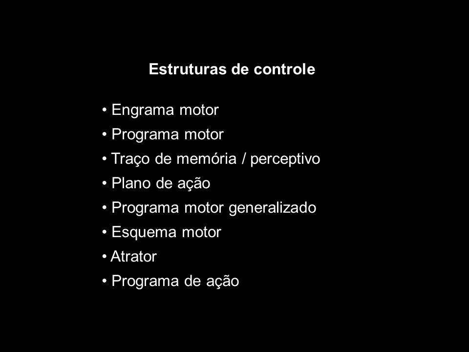 Aprendizagem Motora  Mudança relativamente permanente no comportamento motor;  Mudanças devidas às experiências anteriores;  Mudanças promovidas por meio da prática;  Mudanças inferidas através do desempenho.