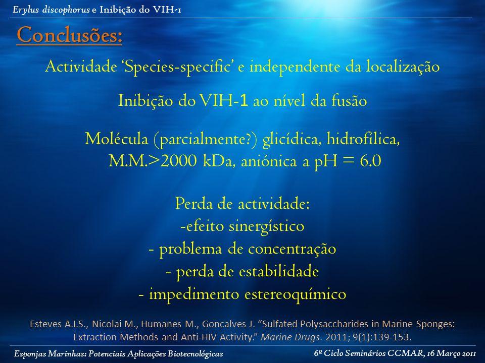 Esponjas Marinhas: Potenciais Aplicações Biotecnológicas Erylus discophorus e Inibição do VIH-1 Actividade 'Species-specific' e independente da localização Inibição do VIH- 1 ao nível da fusão Molécula (parcialmente ) glicídica, hidrofílica, M.M.>2000 kDa, aniónica a pH = 6.0 Perda de actividade: -efeito sinergístico - problema de concentração - perda de estabilidade - impedimento estereoquímico Conclusões: Esteves A.I.S., Nicolai M., Humanes M., Goncalves J.