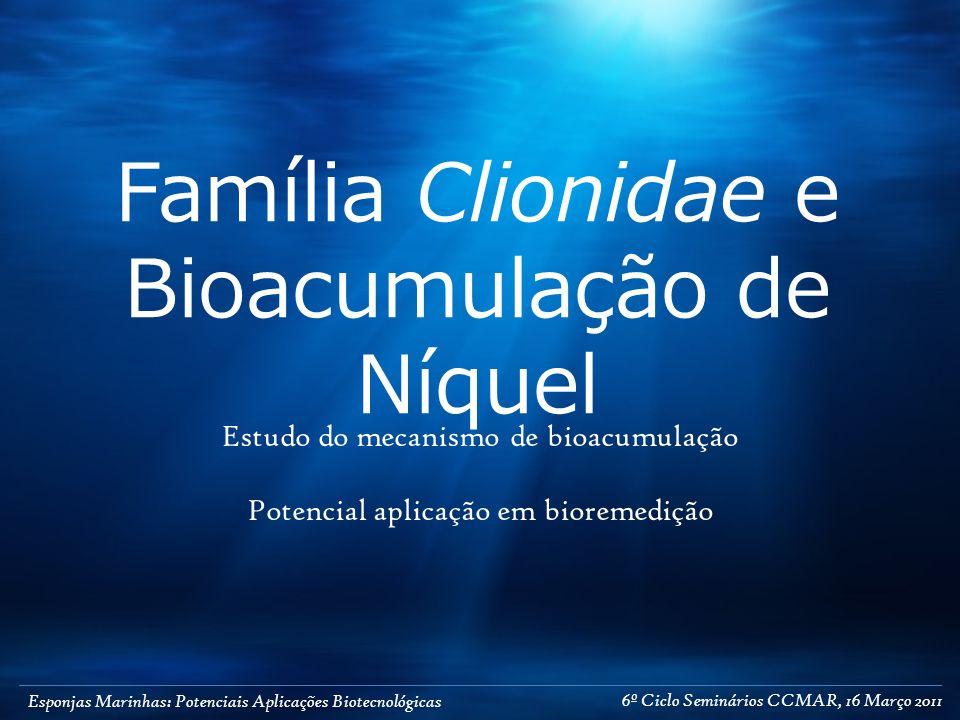 Esponjas Marinhas: Potenciais Aplicações Biotecnológicas Família Clionidae e Bioacumulação de Níquel Estudo do mecanismo de bioacumulação Potencial aplicação em bioremedição 6º Ciclo Seminários CCMAR, 16 Março 2011