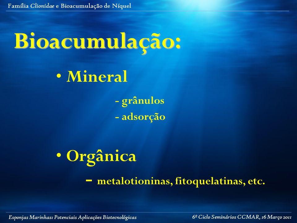 Esponjas Marinhas: Potenciais Aplicações Biotecnológicas Família Clionidae e Bioacumulação de NíquelBioacumulação: Mineral - grânulos - adsorção Orgânica - metalotioninas, fitoquelatinas, etc.