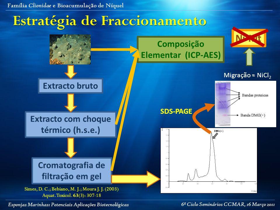 Esponjas Marinhas: Potenciais Aplicações Biotecnológicas Família Clionidae e Bioacumulação de Níquel Estratégia de Fraccionamento Extracto bruto Extracto com choque térmico (h.s.e.) Cromatografia de filtração em gel Composição Elementar (ICP-AES) SDS-PAGE Migração ≈ NiCl 2 Simes, D.