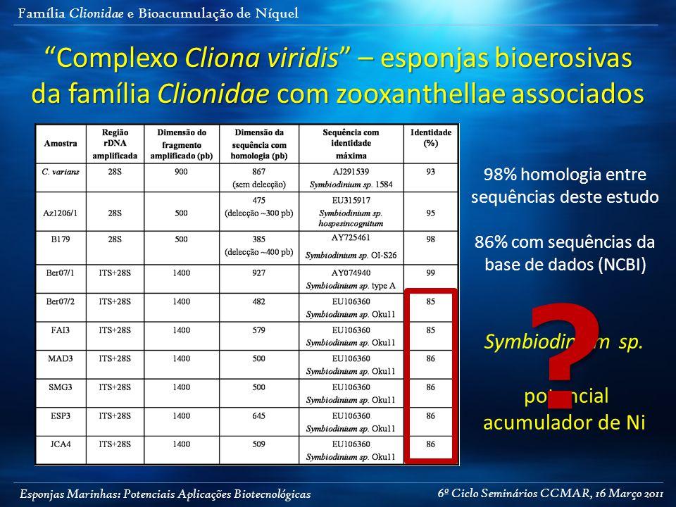 """Esponjas Marinhas: Potenciais Aplicações Biotecnológicas Família Clionidae e Bioacumulação de Níquel """"Complexo Cliona viridis"""" – esponjas bioerosivas"""