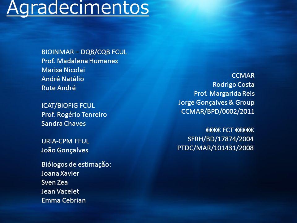 Agradecimentos BIOINMAR – DQB/CQB FCUL Prof.