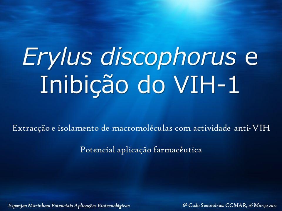 Esponjas Marinhas: Potenciais Aplicações Biotecnológicas Erylus discophorus e Inibição do VIH-1 Extracção e isolamento de macromoléculas com actividad
