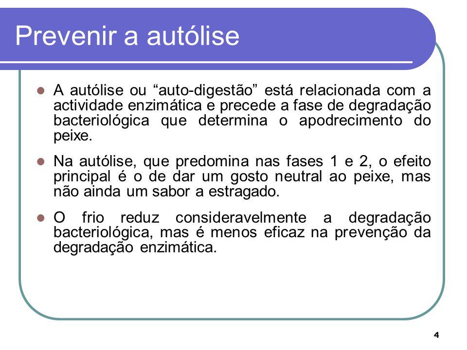 4 Prevenir a autólise A autólise ou auto-digestão está relacionada com a actividade enzimática e precede a fase de degradação bacteriológica que determina o apodrecimento do peixe.