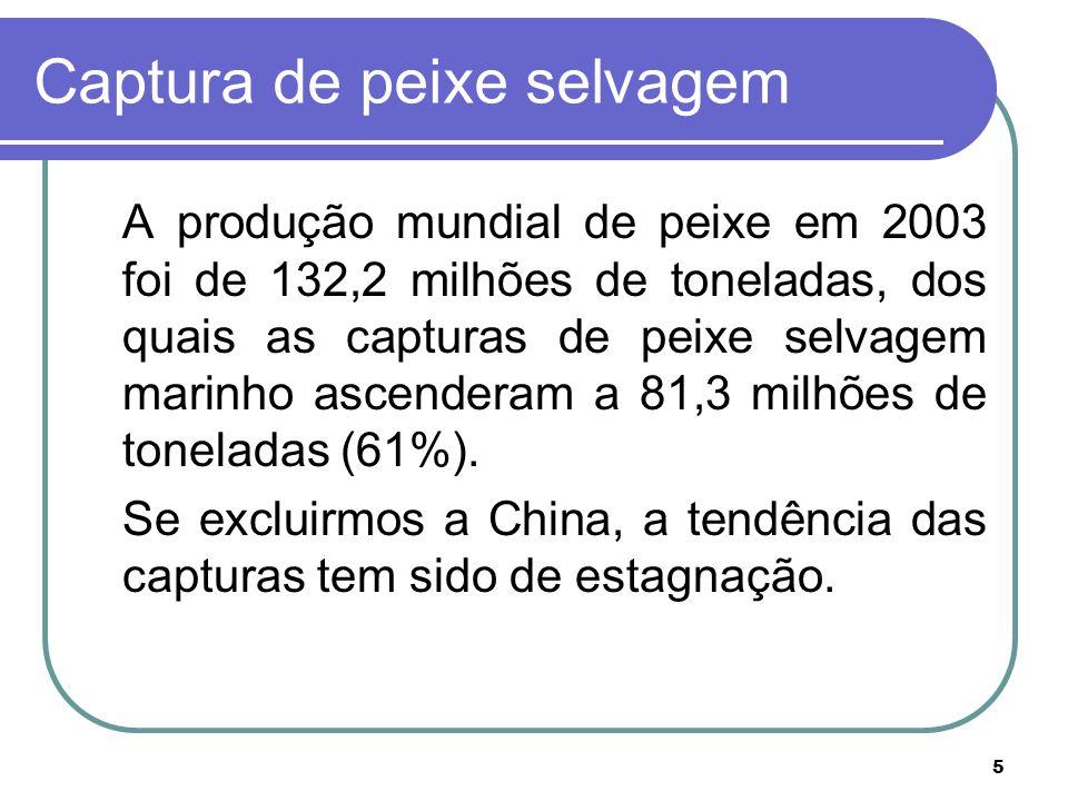 5 Captura de peixe selvagem A produção mundial de peixe em 2003 foi de 132,2 milhões de toneladas, dos quais as capturas de peixe selvagem marinho ascenderam a 81,3 milhões de toneladas (61%).