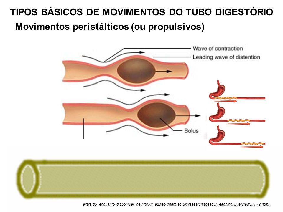 Movimentos de mistura TIPOS BÁSICOS DE MOVIMENTOS DO TUBO DIGESTÓRIO extraído, enquanto disponível, de http://medweb.bham.ac.uk/research/toescu/Teachi