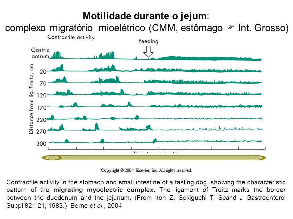 Movimentos do Tubo digestivo(TGI) no jejum: Complexo migratório mioelétrico (CMM): estômago  Int. Grosso durante a alimentação Estômago: relaxamento