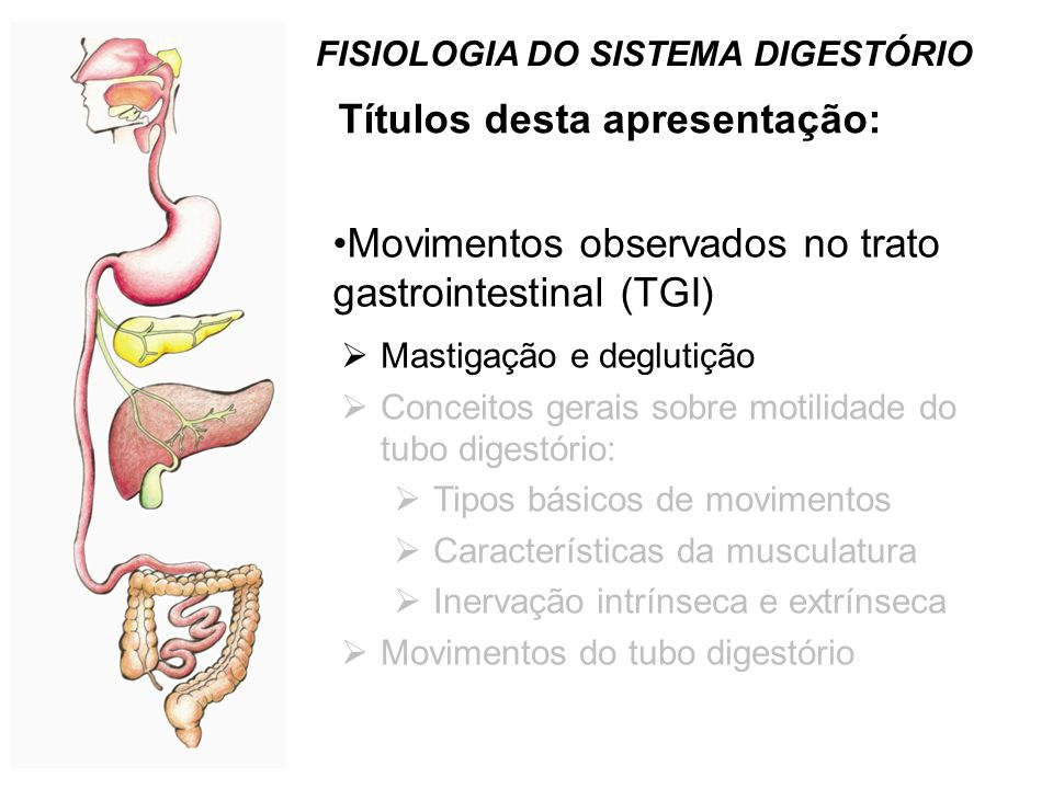 Movimentos do Tubo digestivo(TGI) no jejum: Complexo migratório mioelétrico (CMM): estômago  Int.