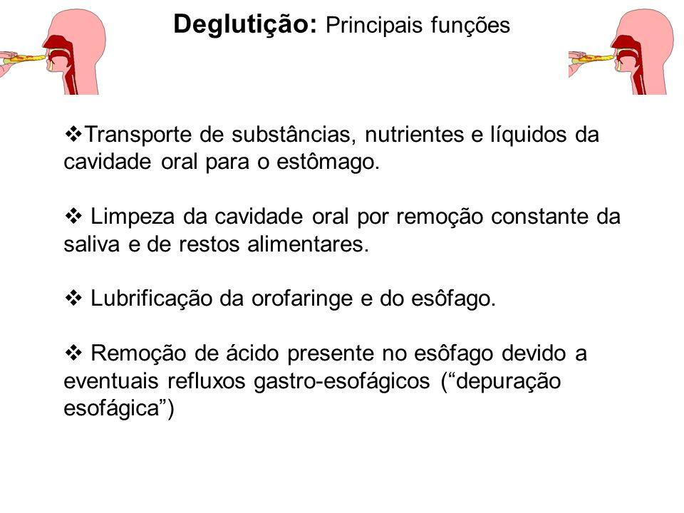  Transporte de substâncias, nutrientes e líquidos da cavidade oral para o estômago.