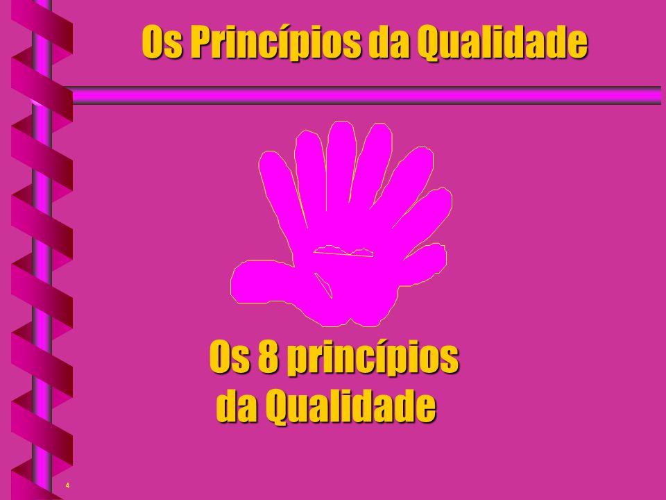 4 Os Princípios da Qualidade Os 8 princípios da Qualidade da Qualidade