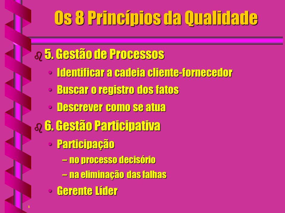 8 Os 8 Princípios da Qualidade b 5. Gestão de Processos Identificar a cadeia cliente-fornecedorIdentificar a cadeia cliente-fornecedor Buscar o regist