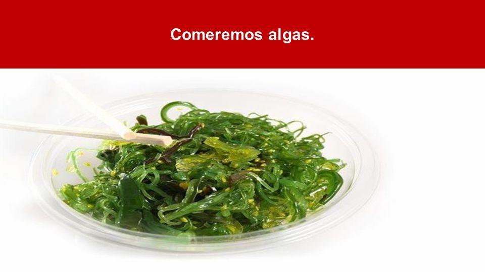 Comeremos algas.