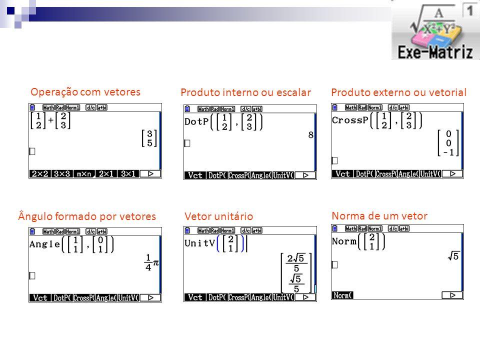 Produto interno ou escalar Operação com vetores Norma de um vetor Produto externo ou vetorial Ângulo formado por vetoresVetor unitário