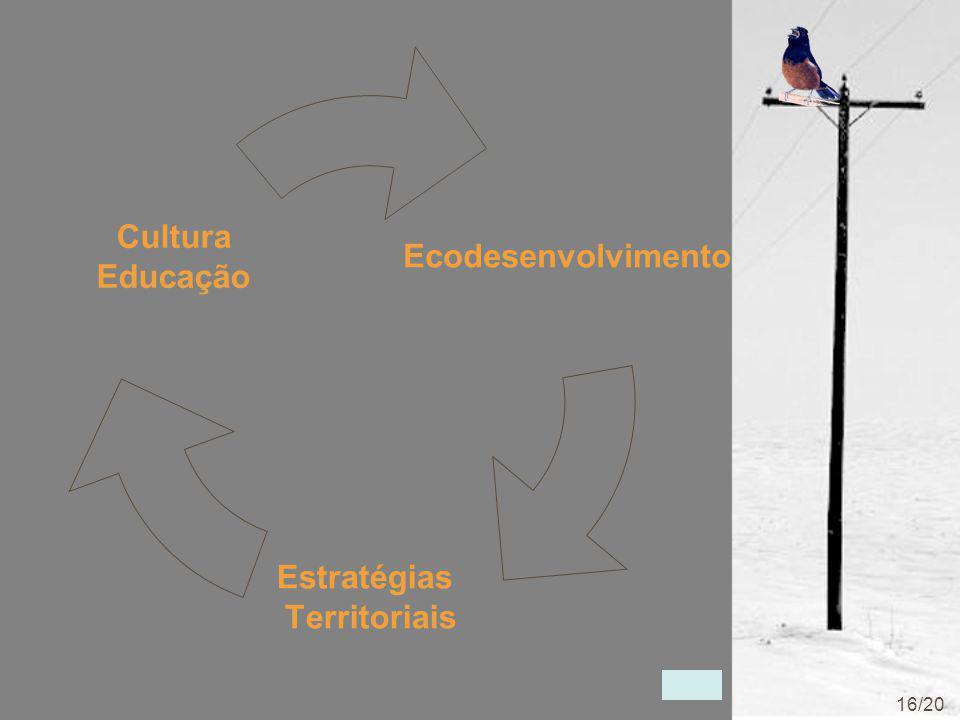 Ecodesenvolvimento Estratégias Territoriais Cultura Educação 16/20