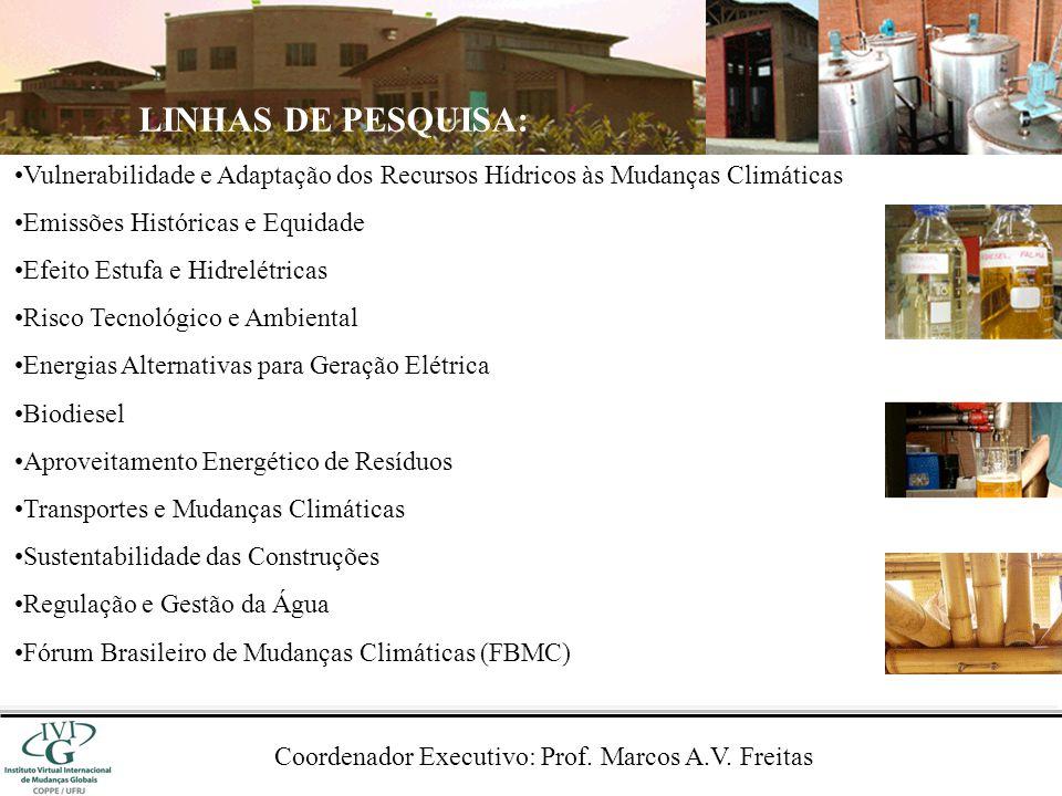 USINAS ÁREA DO RESERVATÓRIO (km 2 ) CAPACIDADE INSTALADA (MW) ÁREA / CAPACIDADE (km 2 /MW) Serra da Mesa1.7841.2751,40 Porto Primavera2.1401.5401,39 Itaparica8281.4800,56 Estreito5901.0870,54 Tucuruí2.4308.3250,29 Salto Caxias1411.2400,11 Itá1411.4500,10 Itaipu1.34214.0000,10 Santo Antônio2713.1500,09 Jirau2583.3000,08 Machadinho791.1400,07 Segredo811.2600,06 Belo Monte51611.2330,05 Xingó603.1620,02