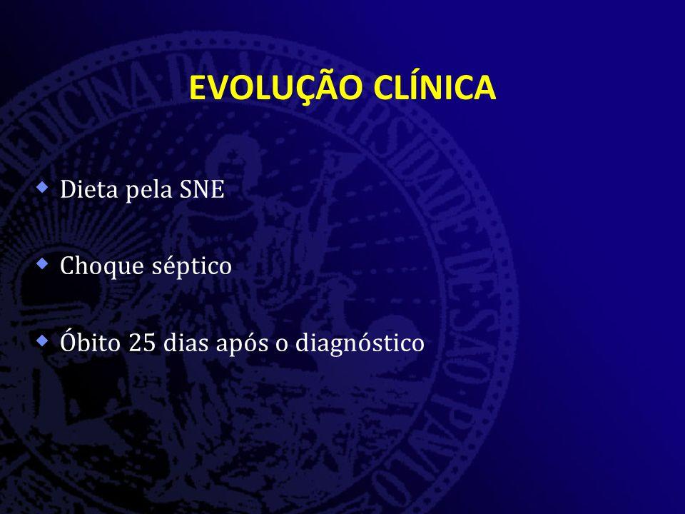 EVOLUÇÃO CLÍNICA  Dieta pela SNE  Choque séptico  Óbito 25 dias após o diagnóstico
