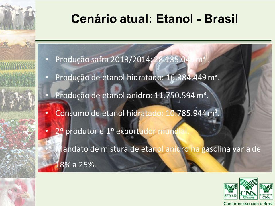 Cenário atual: Etanol - Brasil Produção safra 2013/2014: 28.135.043 m³. Produção de etanol hidratado: 16.384.449 m³. Produção de etanol anidro: 11.750