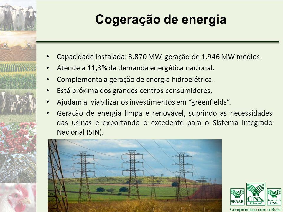 Cogeração de energia Capacidade instalada: 8.870 MW, geração de 1.946 MW médios. Atende a 11,3% da demanda energética nacional. Complementa a geração