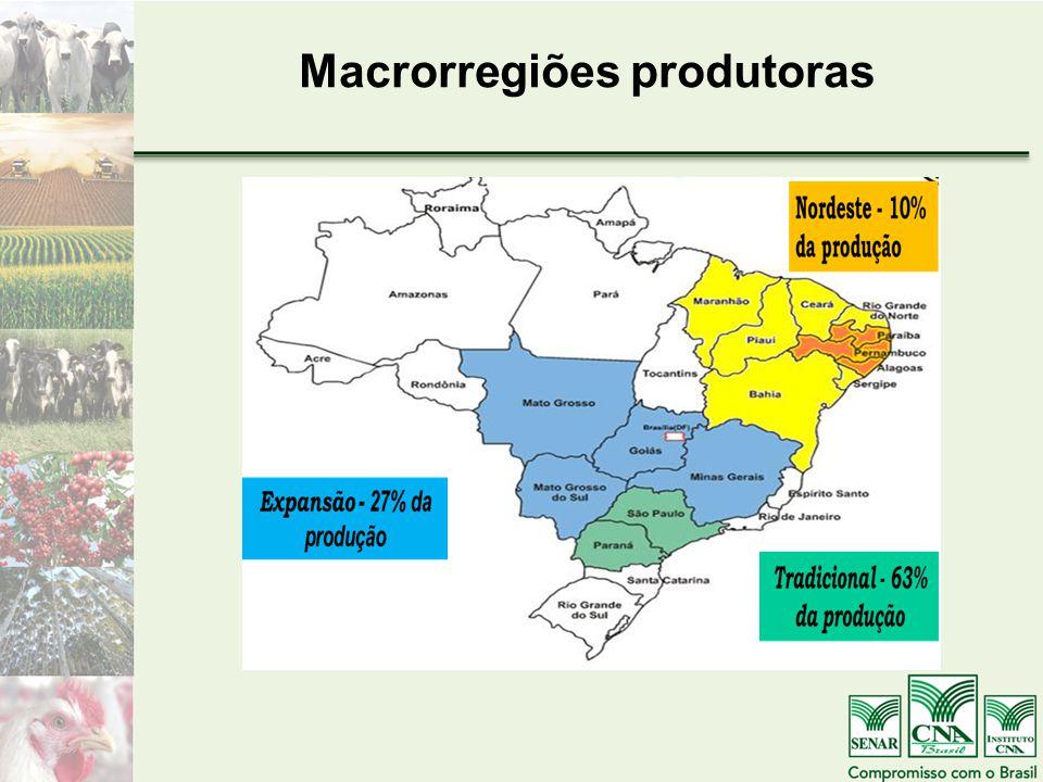 Macrorregiões produtoras