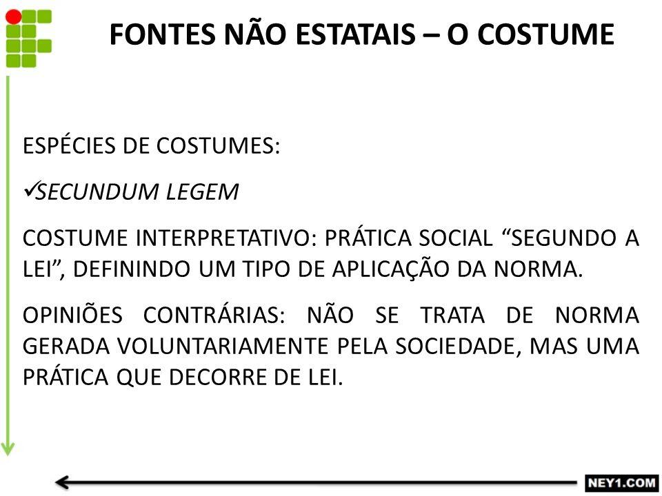 ESPÉCIES DE COSTUMES: SECUNDUM LEGEM COSTUME INTERPRETATIVO: PRÁTICA SOCIAL SEGUNDO A LEI , DEFININDO UM TIPO DE APLICAÇÃO DA NORMA.