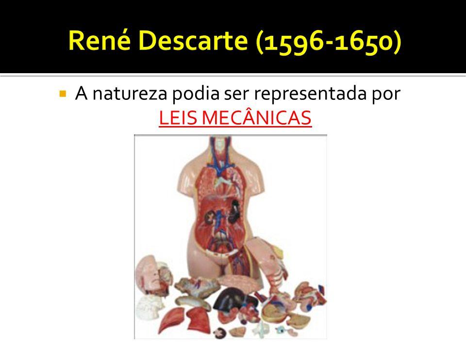  A natureza podia ser representada por LEIS MECÂNICAS