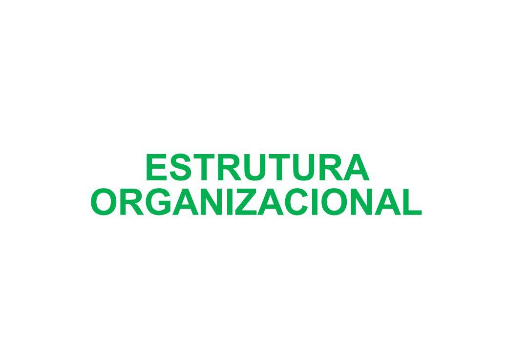 02) ORGANIZAÇÃO FUNCIONAL: – Vantagens: Linhas diretas de comunicação; Descentralização das decisões; Ênfase na especialização > contribuição para toda a organização.