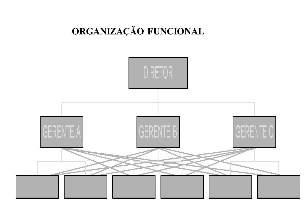 02) ORGANIZAÇÃO FUNCIONAL: – Desvantagens: Diluição da autoridade; Incompatibilidade de ordens; Confusão quanto a quem recorrer; Disputas / Conflitos.