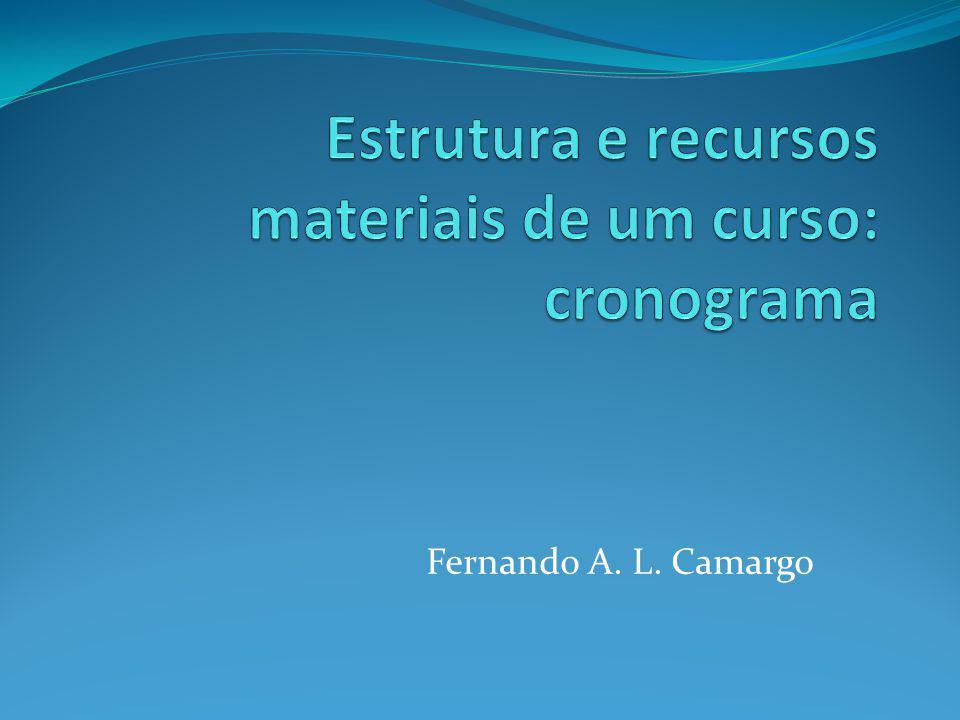 Fernando A. L. Camargo