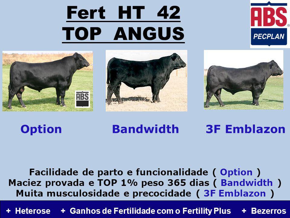 Fert HT 42 TOP ANGUS Facilidade de parto e funcionalidade ( Option ) Maciez provada e TOP 1% peso 365 dias ( Bandwidth ) Muita musculosidade e precocidade ( 3F Emblazon ).