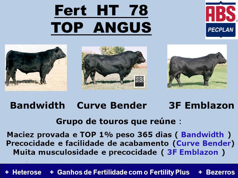 Fert HT 78 TOP ANGUS Grupo de touros que reúne : Maciez provada e TOP 1% peso 365 dias ( Bandwidth ) Precocidade e facilidade de acabamento (Curve Bender) Muita musculosidade e precocidade ( 3F Emblazon ).