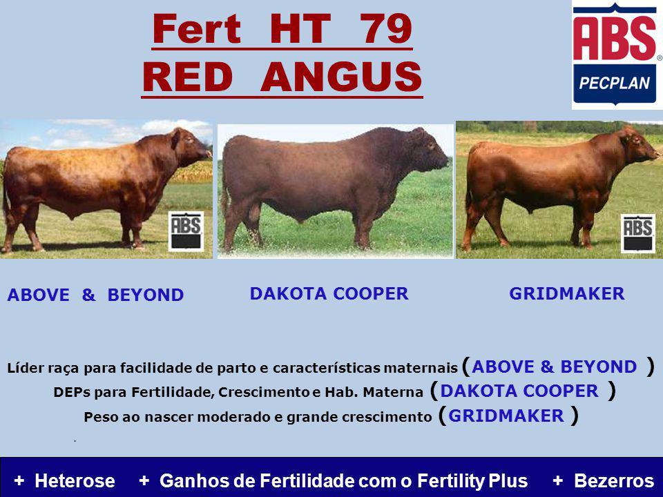 Fert HT 79 RED ANGUS Líder raça para facilidade de parto e características maternais ( ABOVE & BEYOND ) DEPs para Fertilidade, Crescimento e Hab.