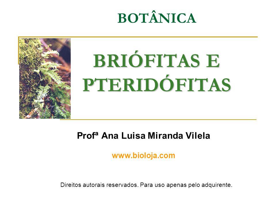BRIÓFITAS E PTERIDÓFITAS BOTÂNICA BRIÓFITAS E PTERIDÓFITAS Profª Ana Luisa Miranda Vilela www.bioloja.com Direitos autorais reservados. Para uso apena