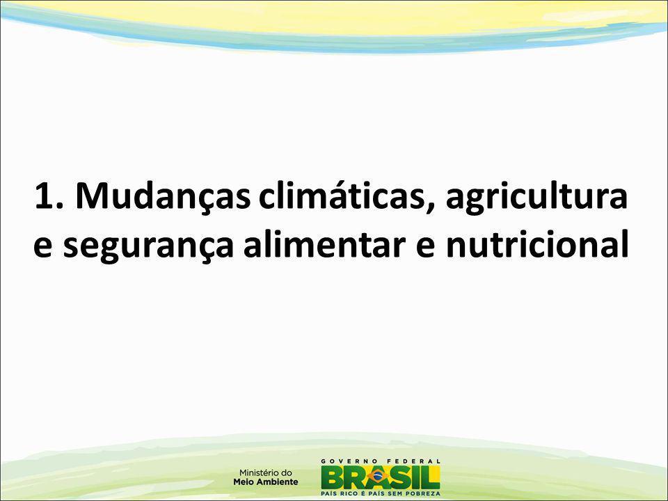 PPCDAm Fonte: 8º Seminário Técnico Científico dos Dados do Desmatamento na Amazônia 2012 – DPCD/MMA