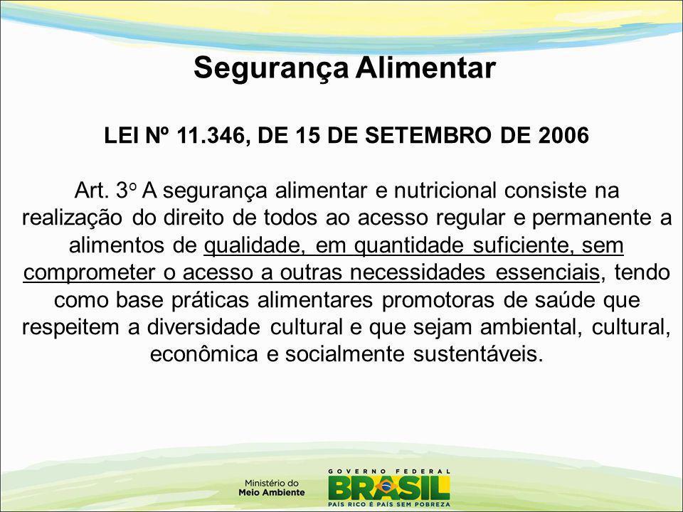 Segurança Alimentar LEI Nº 11.346, DE 15 DE SETEMBRO DE 2006 Art. 3 o A segurança alimentar e nutricional consiste na realização do direito de todos a