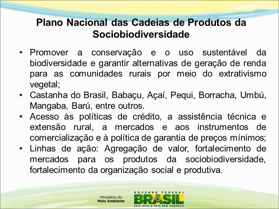 Promover a conservação e o uso sustentável da biodiversidade e garantir alternativas de geração de renda para as comunidades rurais por meio do extrat