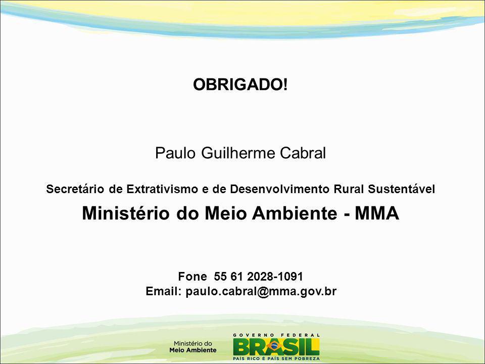 OBRIGADO! Paulo Guilherme Cabral Secretário de Extrativismo e de Desenvolvimento Rural Sustentável Ministério do Meio Ambiente - MMA Fone 55 61 2028-1