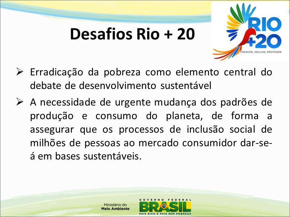 Plano Nacional sobre Mudanças do Clima PNMC Instrumentos Plano de Ação para Prevenção e Controle do Desmatamento e Queimadas no Cerrado - PPCerrado Plano de Prevenção e Controle do Desmatamento na Amazônia - PPCDam Plano Agricultura de Baixo Carbono – ABC Fundo Nacional de Mudanças Climáticas – FNMC Metas de Redução Desmatamento na Amazônia: Reduzir 80% da média de 1996 - 2005 Desmatamento no Cerrado: Reduzir 40% da média de 1999 – 2008 Programa ABC (Agropecuária): redução de 141,9 a 172,9 milhões tonCO 2 eq
