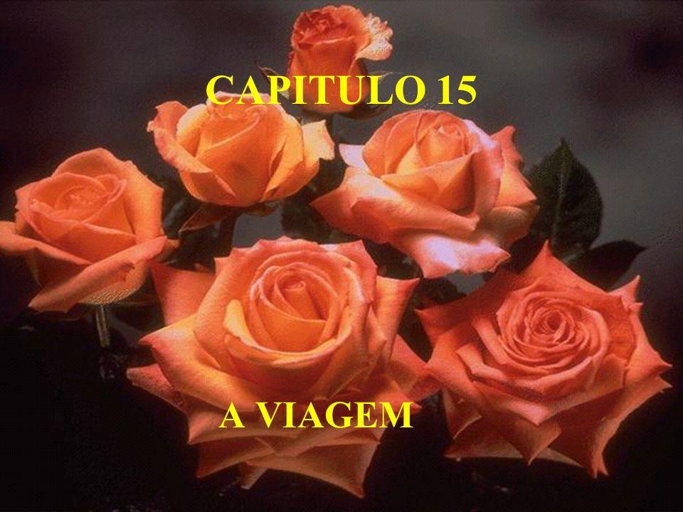 CAPITULO 15 A VIAGEM