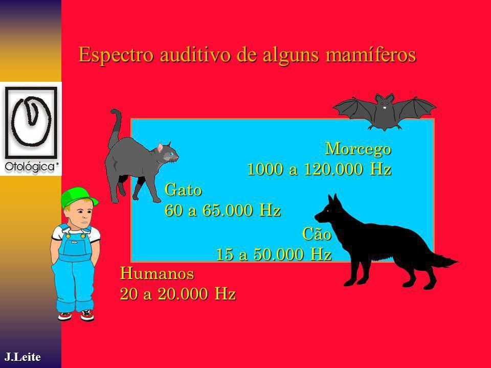 Humanos 20 a 20.000 Hz Cão 15 a 50.000 Hz Gato 60 a 65.000 Hz Morcego 1000 a 120.000 Hz J.Leite Espectro auditivo de alguns mamíferos