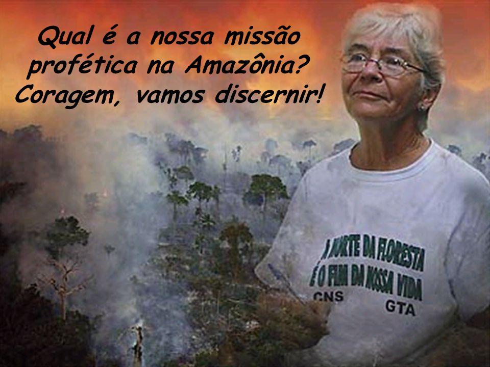 Qual é a nossa missão profética na Amazônia Coragem, vamos discernir!