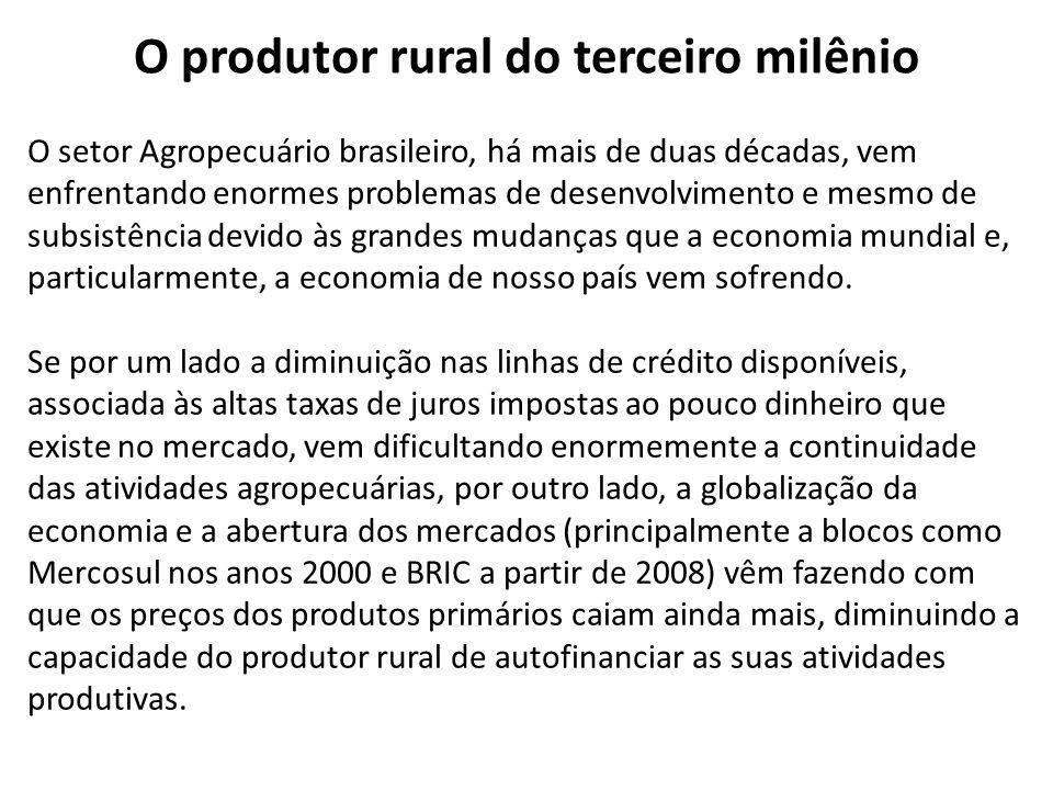 O produtor rural do terceiro milênio O setor Agropecuário brasileiro, há mais de duas décadas, vem enfrentando enormes problemas de desenvolvimento e