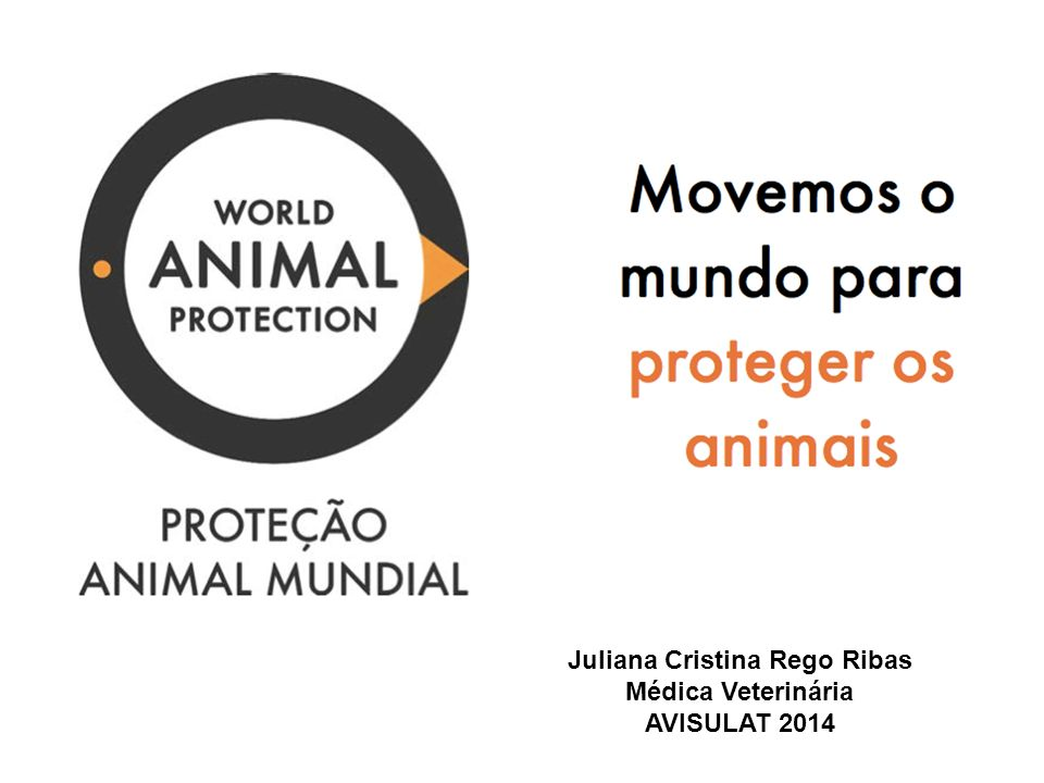 Quem é a World Animal Protection.