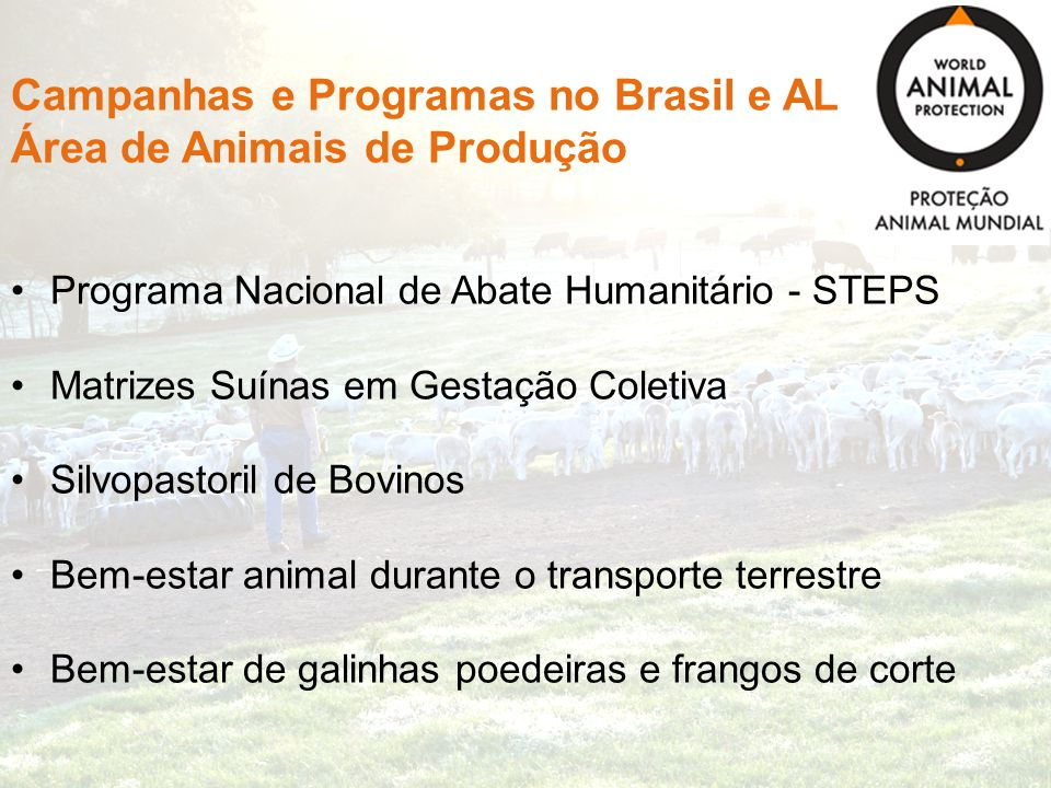 Campanhas e Programas no Brasil e AL Área de Animais de Produção Programa Nacional de Abate Humanitário - STEPS Matrizes Suínas em Gestação Coletiva S