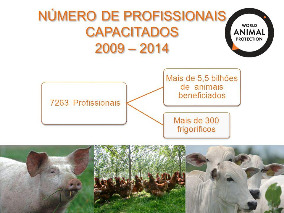 NÚMERO DE PROFISSIONAIS CAPACITADOS 2009 – 2014 NÚMERO DE PROFISSIONAIS CAPACITADOS 2009 – 2014 7263 Profissionais Mais de 5,5 bilhões de animais bene